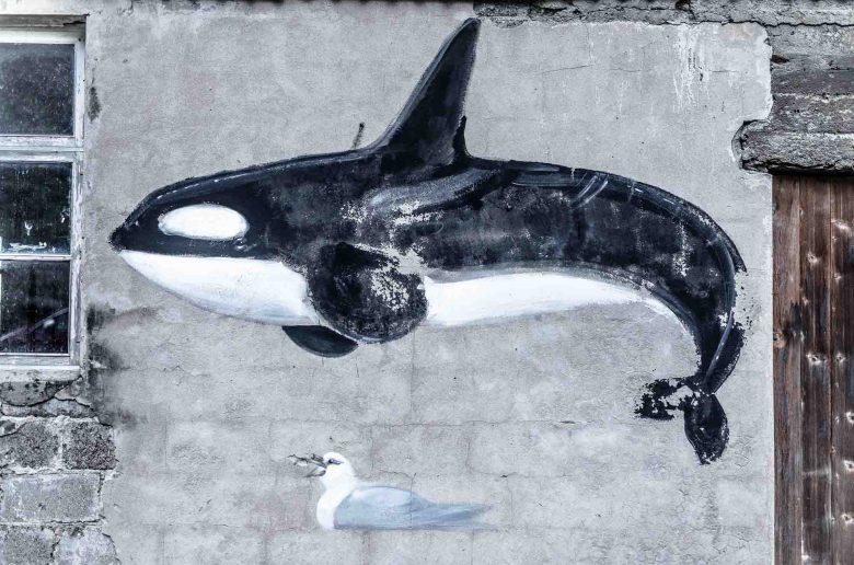 Orca mural